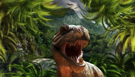 DinosaurWallpaper (11)